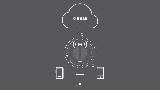 KODIAK Broadband Pus